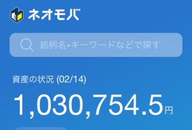 【日本株ポートフォリオ公開】ネオモバで配当金を増やせ! (SBIネオモバイル証券運用プロセス)